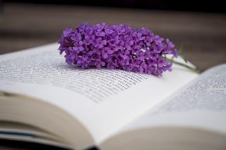 book-2710450_960_720.jpg