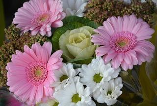 flower-2751797_640.jpg