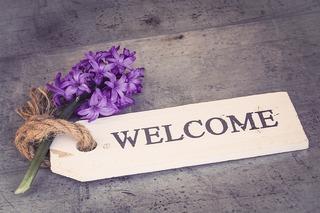 hyacinth-1398839_640.jpg