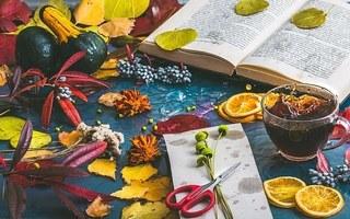 autumn-mood-1229981__340.jpg