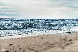 beach-1868672__340.jpg