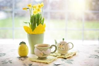 daffodils-1316127_960_720.jpg