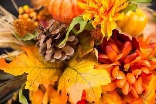 fall-flowers-2716513_640.jpg