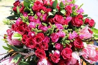 flowers-660666__340.jpg