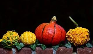 pumpkin-2741379_640.jpg