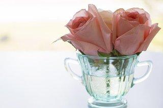 rose-3473379__340.jpg