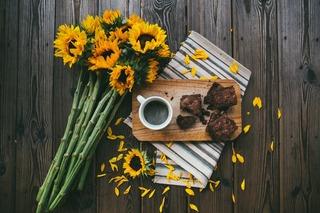 sunflower-2598970_1920.jpg