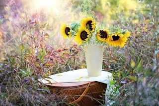 sunflowers-1719119_640.jpg