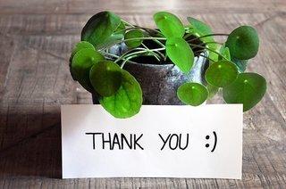 thank-you-3690116__340.jpg
