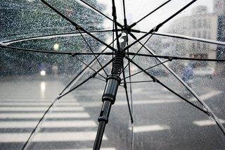 umbrella-4425160__340.jpg
